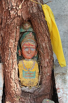 Hindu idol sculptured in tree.jpg