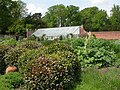 Hinton Admiral, kitchen garden - geograph.org.uk - 1295510.jpg
