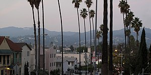 Hollywood Hills from Normandie Avenue.jpg