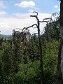 Hrubá Skála - panoramio (3).jpg