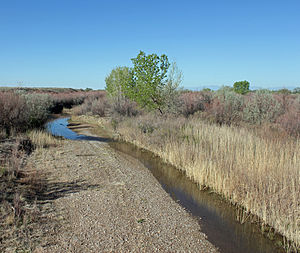 Huerfano River - The river just before it goes under U.S. Highway 50 in Pueblo County.