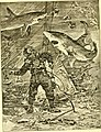 Hunting and trapping stories; a book for boys (1903) (14759545726).jpg
