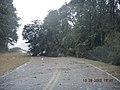 Hurricane Sandy hit Chincoteague National Wildlife Refuge (VA) (8141825419).jpg
