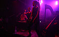 I-Wolf and the Chainreactions at Fluc Wanne WAVES VIENNA 2013 26.jpg