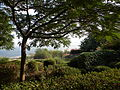 ISRAEL, Mount of Beatitudes; Path to the Mount.JPG