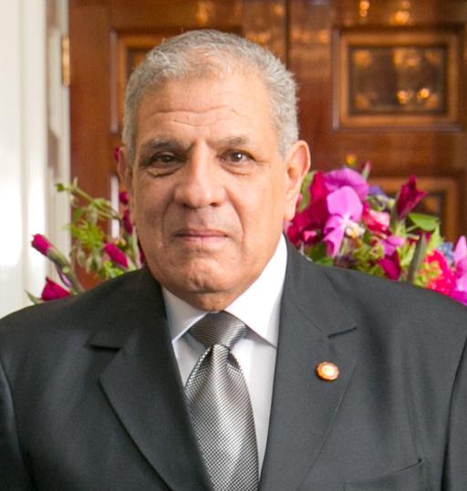 Ibrahim Mahlab 2014