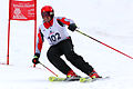 Inferno Riesenslalom-02 2007.jpg