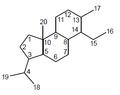 Isocleistantano - Numeración.png