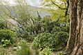 Isole Brissago 16 apr 2016 138.jpg