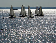 JY15s Racing at Raritan Yacht Club.jpg