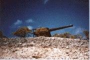 Japanese Artillery on Wake