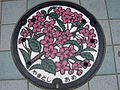 Japanese Manhole Covers (10925426434).jpg