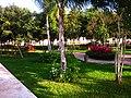 Jardínes del parque. - panoramio.jpg