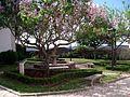 Jardim no caminho de acesso ao Castelo de Ourém (2).jpg