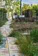 Jardin des Fetes collectif rue des Thermopyles Paris.jpg