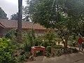 Jardines Basilica Sta Ana de Rengo.jpg