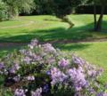 Jardins du château.png
