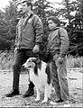 Jed Allan Mark Miranda Lassie 1968.JPG