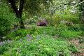 Jenkins Arboretum - DSC00680.JPG