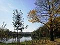 Jeseň pri Váhu - panoramio.jpg