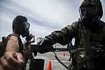 Joint forces decontaminate the flight line 071317-M-PY134-551.jpg