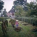 Jongen met kruiwagen vol tuinafval - Boy with wheelbarrow filled with garden disposal (5896773685)