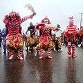 Jos Carnival 40.jpg