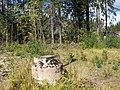 Kaivo Ja Venäläisten sotavankien hautamuistomerkki, Kivikonlaita - panoramio.jpg