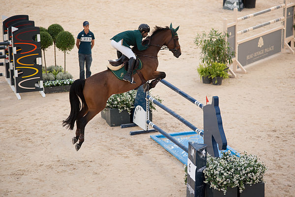 Equestrian Global Champions Tour Prize Money
