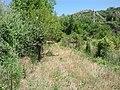 Karşıbahçeler, 23500 Palu-Elâzığ, Turkey - panoramio (7).jpg