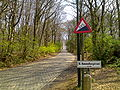 Kemmelberg23.jpg