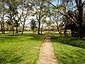 Kenya Naivasha Lake 2013 september - panoramio (1).jpg