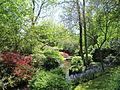 Keukenhof Garden (50).JPG
