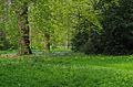 Kew Gardens au printemps.jpg