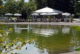 Klagenfurt Europapark Cafe Europa am Lotosteich 14082008 63.jpg