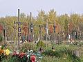 Komunalny Cmentarz Południowy w Warszawie 2011 (41).JPG