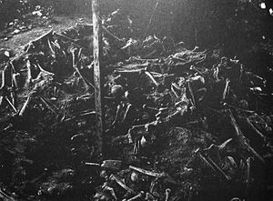 Battle of Visby - The mass grave at Korsbetningen during the 1905 excavation.
