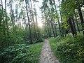 Kotelniki, Moscow Oblast, Russia - panoramio (116).jpg