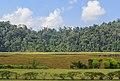 Kunak Sabah Mostyn-Estate-11.jpg