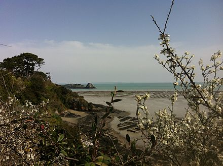 Oister farm in springtime - Cancale
