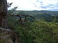 LSG Thüringer Wald Schwarzatal Am Trippstein DE-TH.jpg