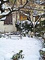 La Castellina-01,02,2012-giardino con neve.jpg
