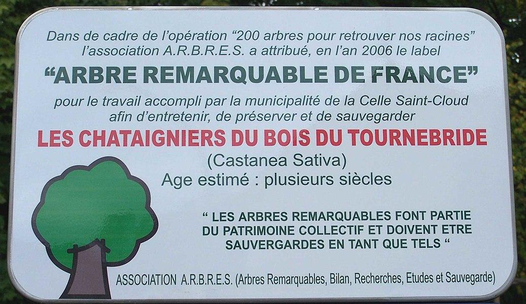 Panneau d'arbres remarquables pour les châtaigniers de Tournebride à la Celle-Saint-Cloud (Yvelines, France)