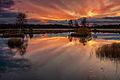 Laanemaa järv Orkjärve looduskaitsealal.jpg