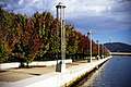 Lake Burley Griffin shore (461381751).jpg