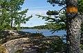 Lake Gisslaren, hiking trail Upplandsleden, Sweden 17.jpg