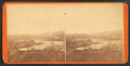 Lake and Bridge, Public Gardens, from Robert N. Dennis collection of stereoscopic views.png