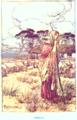 Lamb-P115.png