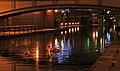 Late Night Swans (2153551402).jpg