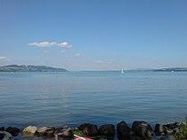 Le lac de Morat de 2008.jpg